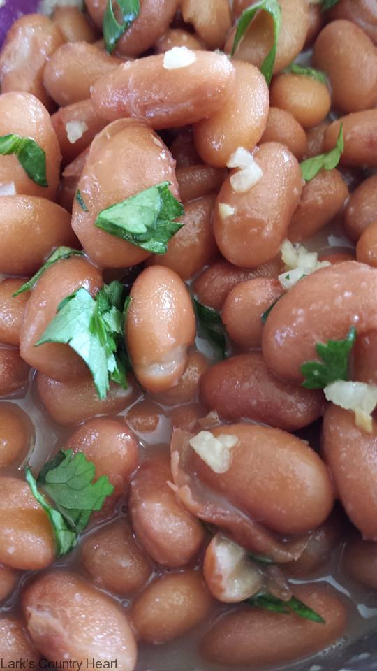 Garlic Cilantro Pinto Beans