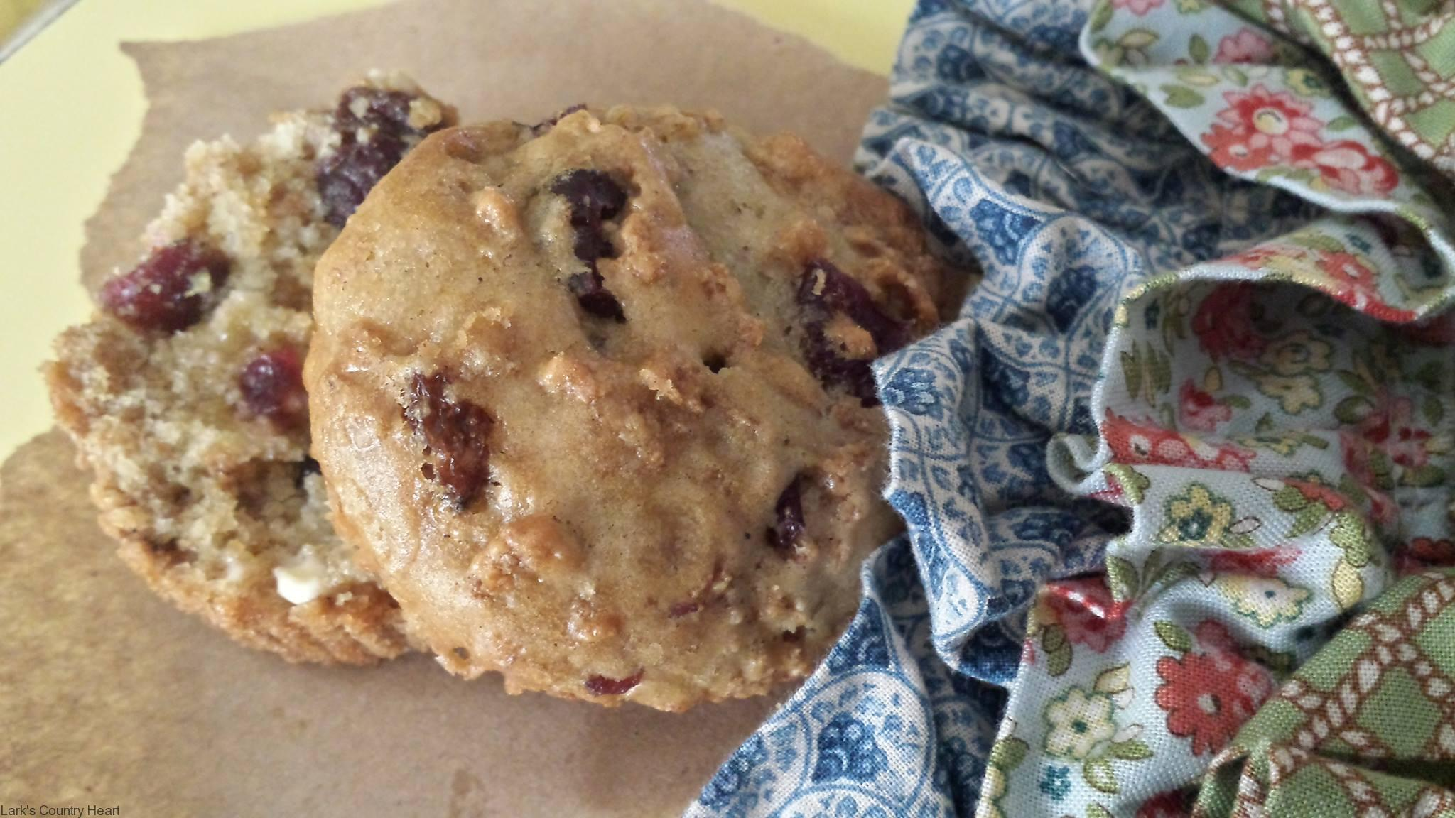 Cran-Raisin Bran Morning Muffins