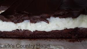 Mounds Brownies3