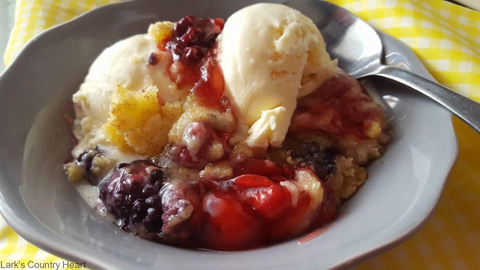 Berry Delicious Damp Cake3