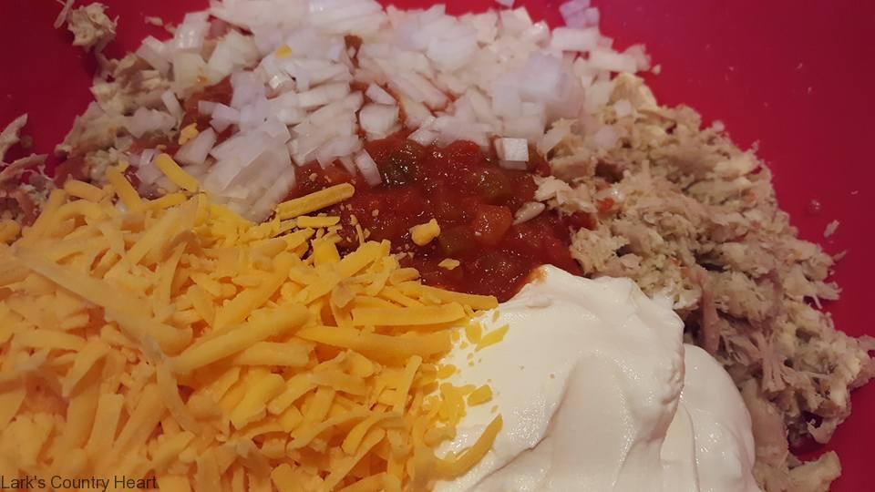 mini-salsa-chicken-chimis1